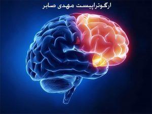 عملکرد اجرایی مغز