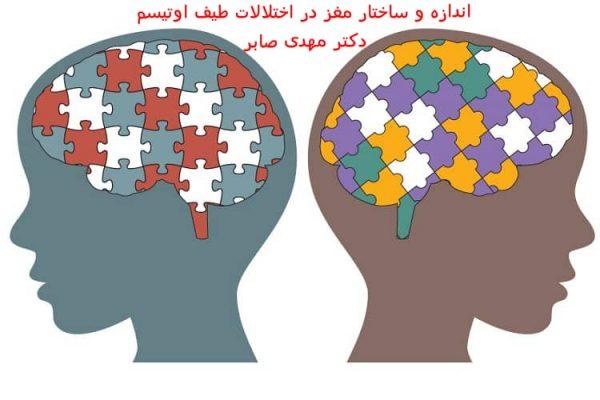 مغز کودک اوتیسم